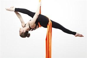 Полотно для гимнастики (Ткань полустрейч габардин)
